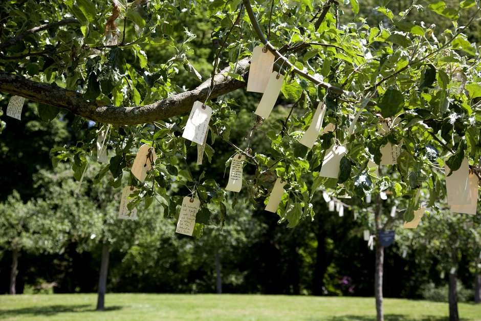 Wish Trees for Bad Homburg